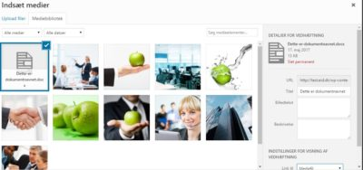 Link til PDF og Word dokumenter